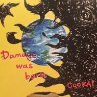 Damage_was_born